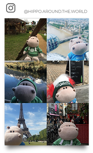 Instagram Hippo around the world